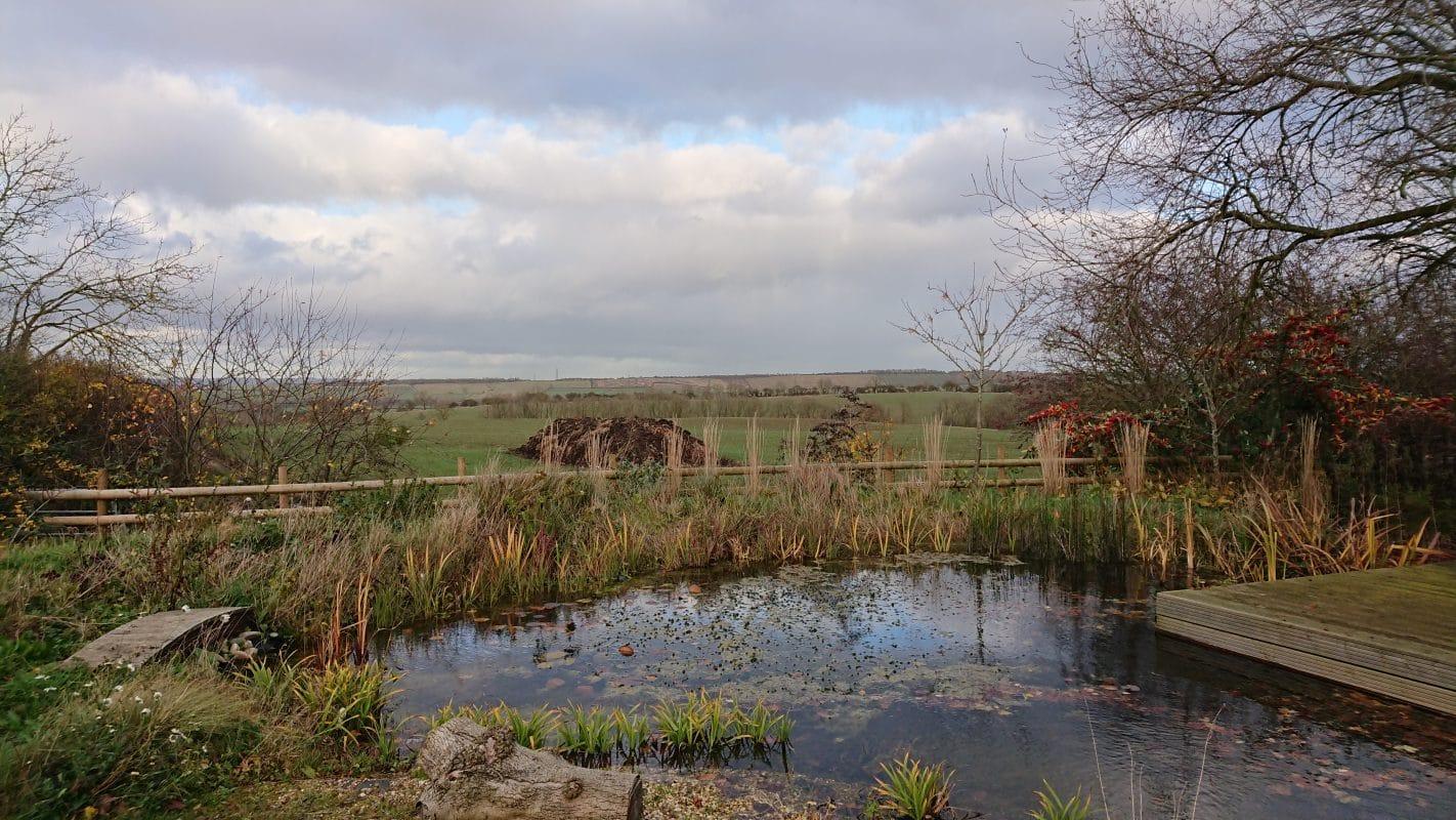 Naturalistic planting and landscape, Northamptonshire ...