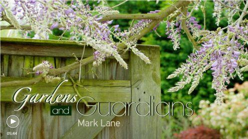 Chinese documentary on Mark Lane